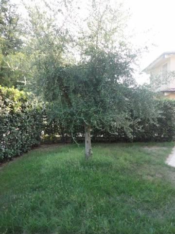 Villa 5 locali in affitto a Lonato del Garda (BS)