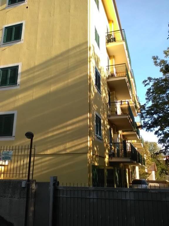 Appartamento in buone condizioni in affitto Rif. 8204391