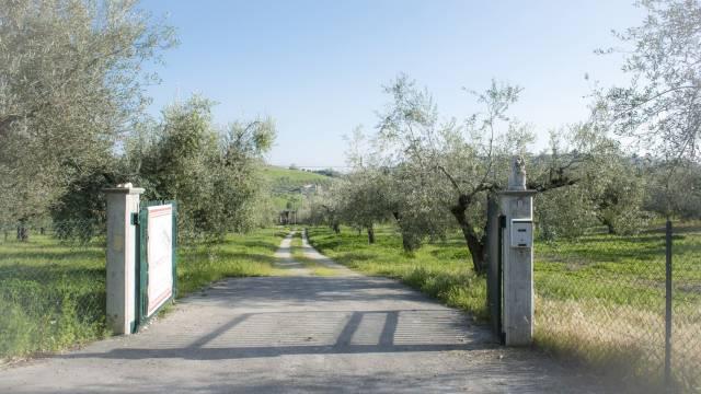Casale immerso nel verde a Montesilvano, confine Pescara