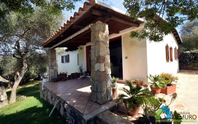 Villa in Vendita a Olbia: 5 locali, 138 mq