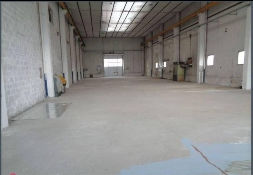 Massa e Cozzile vendesi capannone di 1.200 mq. h. 8 mt. Rif. 4249261