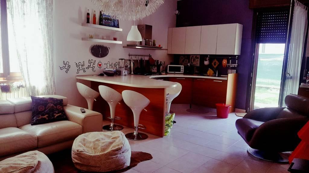 Appartamento in ottime condizioni arredato in affitto Rif. 8859881