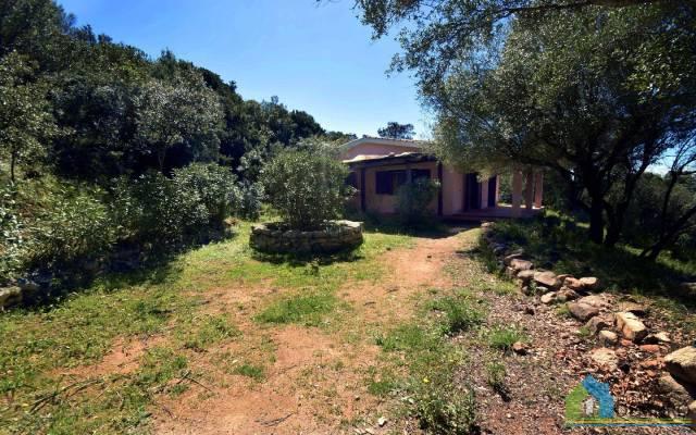 Villa in Vendita a Arzachena: 5 locali, 98 mq