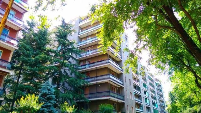 Appartamento in buone condizioni arredato in affitto Rif. 6127892