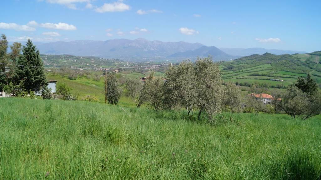 Terreno Agricolo in vendita a Caiazzo, 9999 locali, Trattative riservate | CambioCasa.it