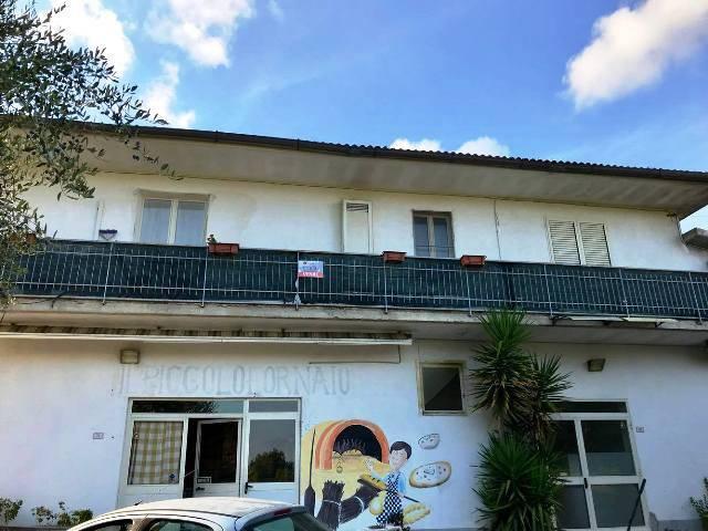 Stabile / Palazzo in ottime condizioni in vendita Rif. 5230139