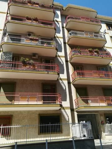 Appartamento in buone condizioni in affitto Rif. 6257149
