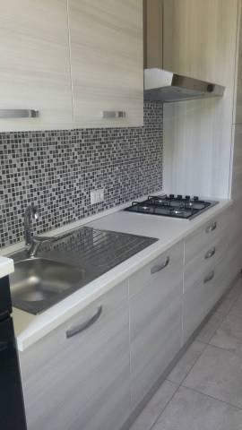 Appartamento in ottime condizioni arredato in affitto Rif. 6334420