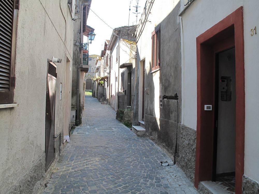 Appartamento in affitto a Magliano Romano, 2 locali, prezzo € 200   CambioCasa.it