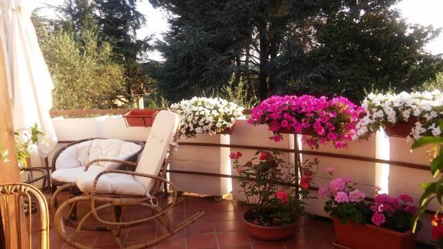 Appartamento in ottime condizioni parzialmente arredato in affitto Rif. 6347473