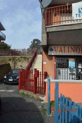 Colonna Via Frascati