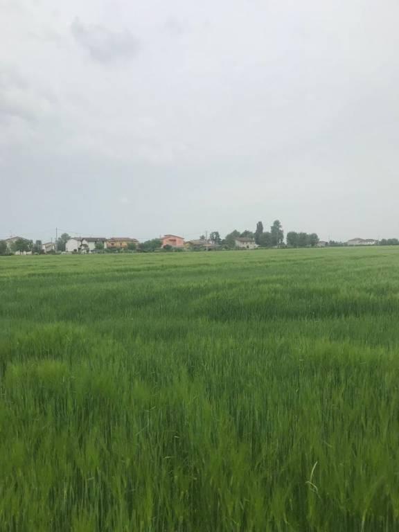 Terreno agricolo Rif. 7551792