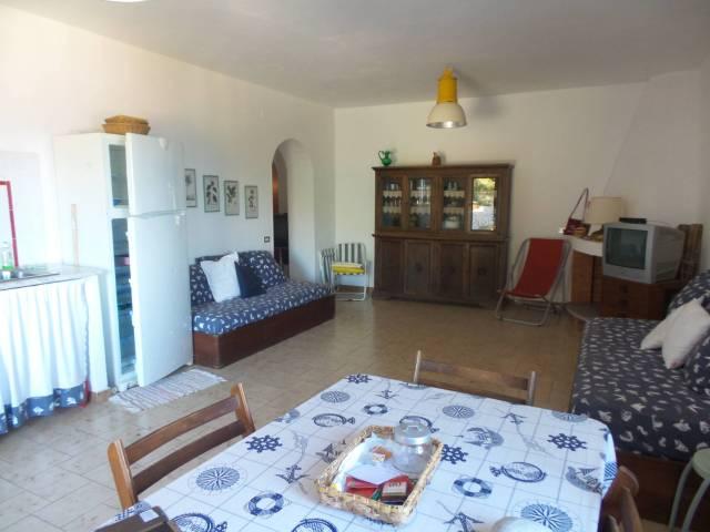 Appartamento trilocale in affitto a Maratea (PZ)