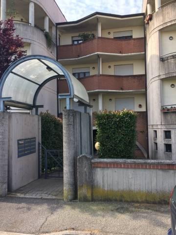 cremona affitto quart:  agenzia domus snc di fedeli fabio & c