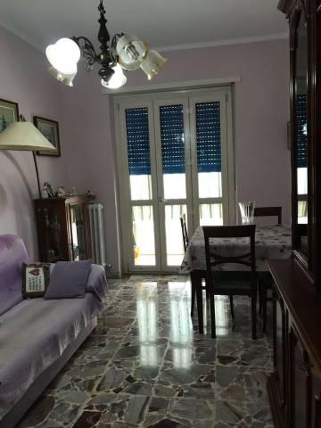 Appartamento in ottime condizioni in affitto Rif. 6679998