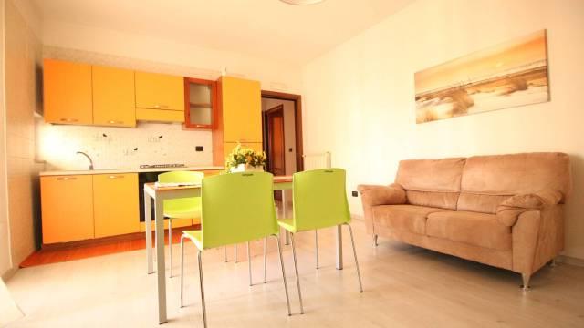 Appartamento in ottime condizioni arredato in affitto Rif. 6700272