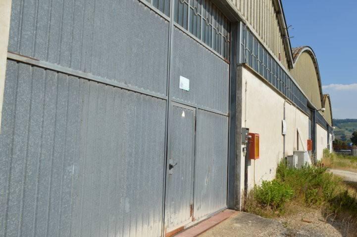 Magazzino - capannone in affitto Rif. 6694946