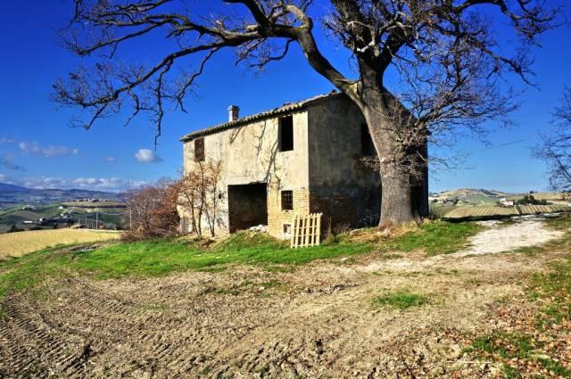 Rustico / Casale da ristrutturare in vendita Rif. 6729054