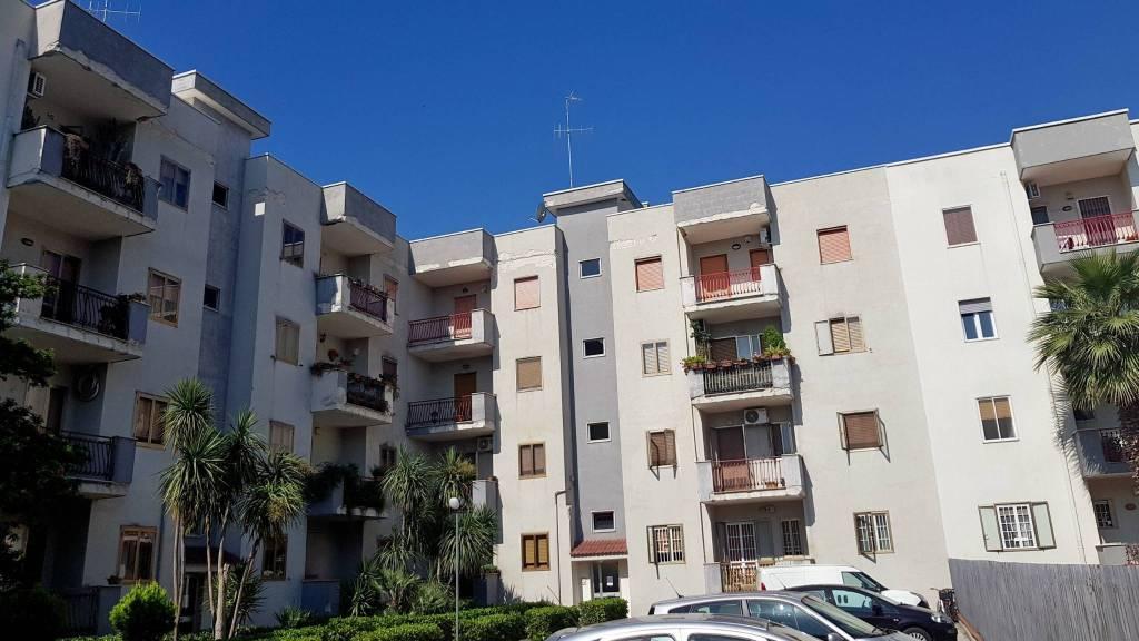 Appartamento in buone condizioni in affitto Rif. 8031374
