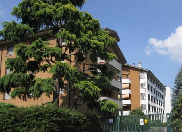 Appartamento, Giuseppe Verdi, 0, Vendita - Vizzolo Predabissi