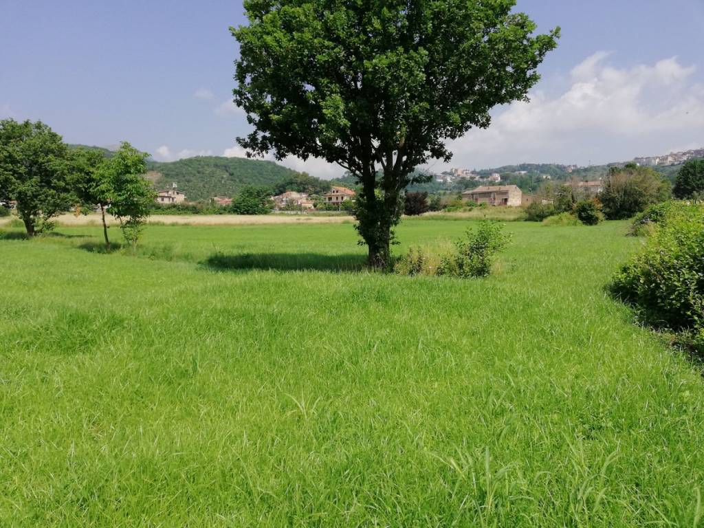 Terreno Agricolo in vendita a Caiazzo, 9999 locali, prezzo € 95.000 | CambioCasa.it