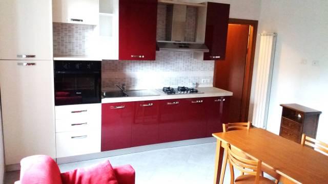 Appartamento in ottime condizioni arredato in affitto Rif. 6807260