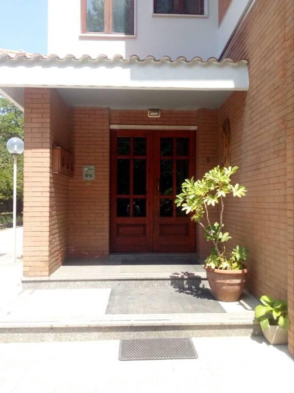 Appartamento in buone condizioni in affitto Rif. 7482009