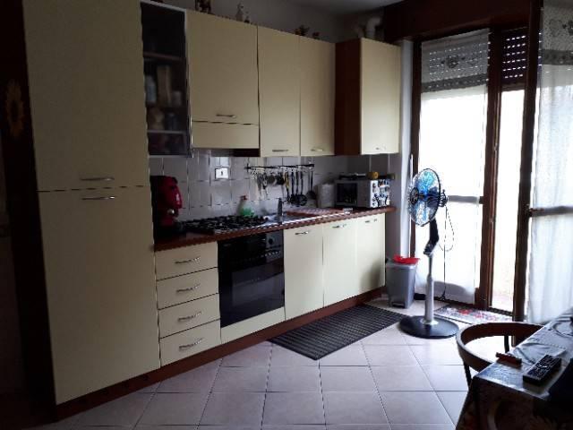 Appartamento in ottime condizioni in affitto Rif. 6836959