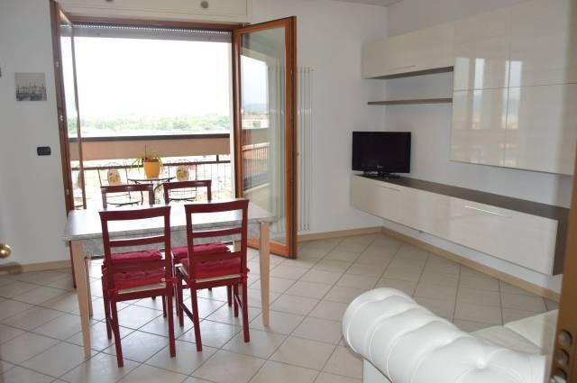 Appartamento in buone condizioni arredato in affitto Rif. 6838797