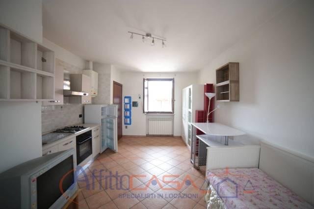 Appartamento in ottime condizioni arredato in affitto Rif. 6881412
