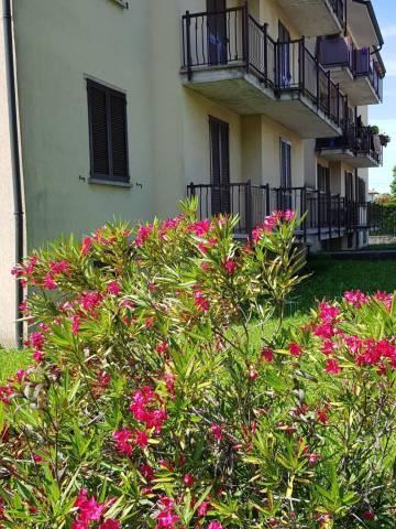 Appartamento in buone condizioni in vendita Rif. 6918789