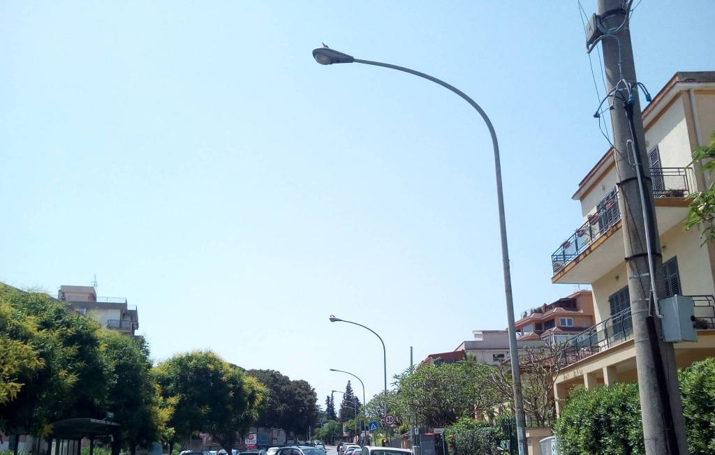 Appartamento in Affitto a Palermo Periferia: 3 locali, 65 mq
