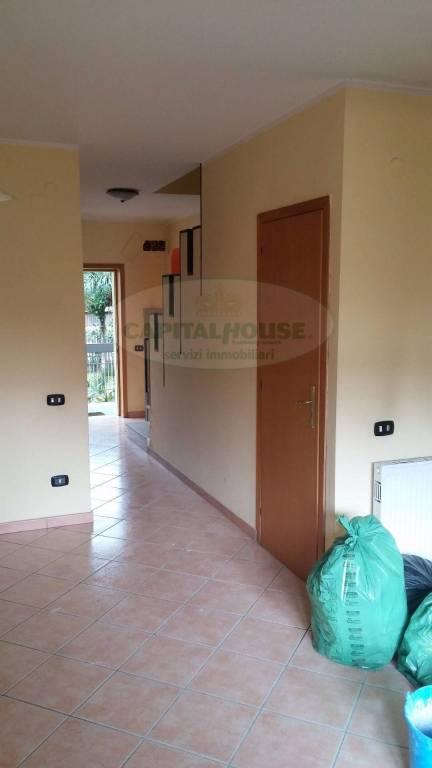 Appartamento in buone condizioni in affitto Rif. 7421283