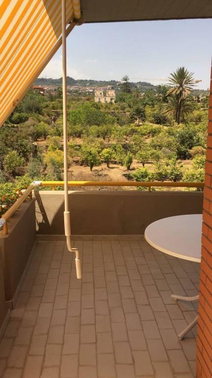 Appartamento in ottime condizioni arredato in affitto Rif. 7750079