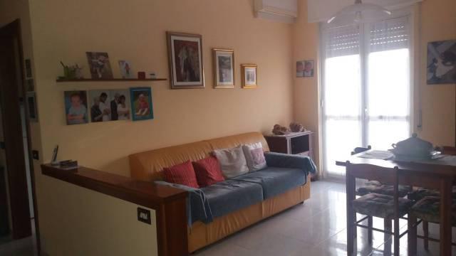 Appartamento in ottime condizioni parzialmente arredato in affitto Rif. 6986723