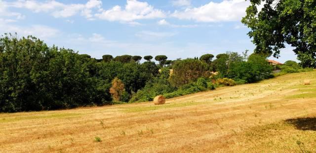 Casa indipendente in affitto a Roma in Via Di Casal Selce, 439