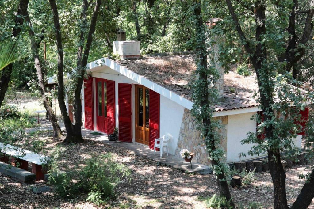 Appartamento in ottime condizioni arredato in affitto Rif. 7002642