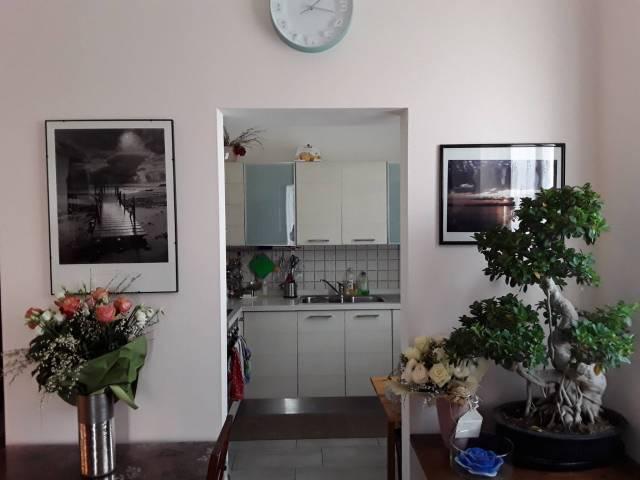 Appartamento in ottime condizioni parzialmente arredato in affitto Rif. 7005913