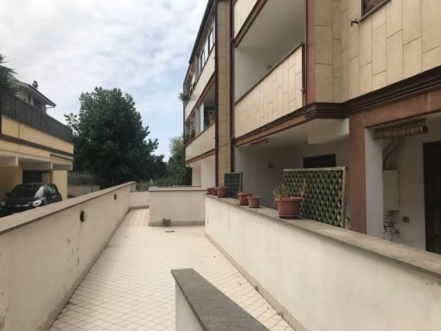 Appartamento in ottime condizioni in affitto Rif. 7002442