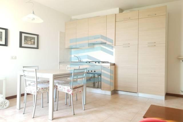 Appartamento in buone condizioni arredato in affitto Rif. 7005452
