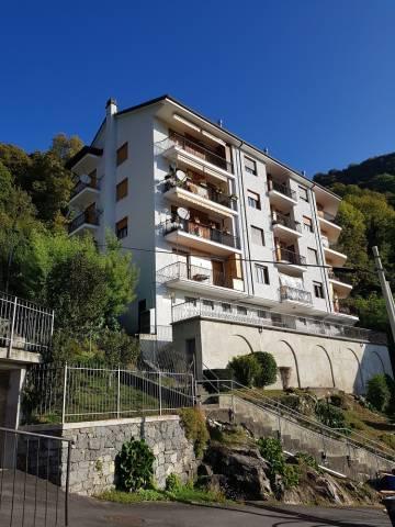 Appartamento in ottime condizioni arredato in affitto Rif. 7012642