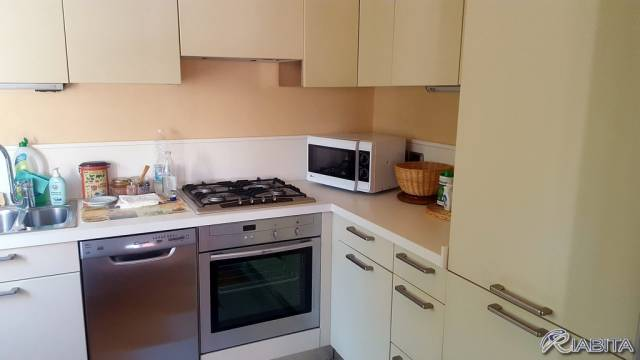 Appartamento in Affitto a Piacenza Periferia: 2 locali, 65 mq