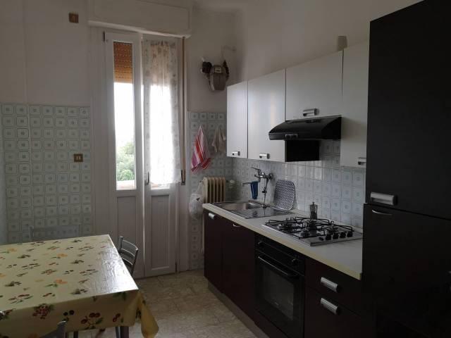 Appartamento in buone condizioni arredato in affitto Rif. 7012827