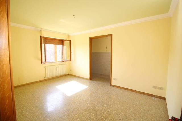 Appartamento in ottime condizioni in affitto Rif. 7030064
