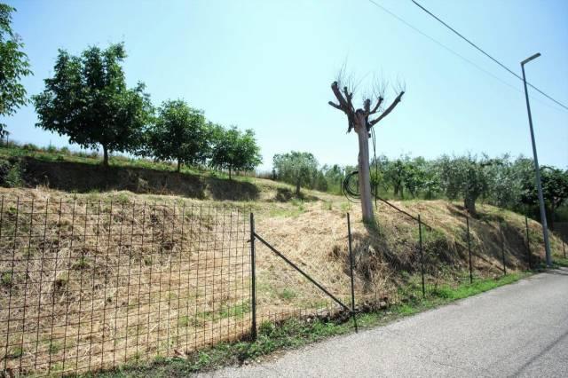 Passo Corese (RI) Lotto edificabile per un comodo villino Rif. 7027586