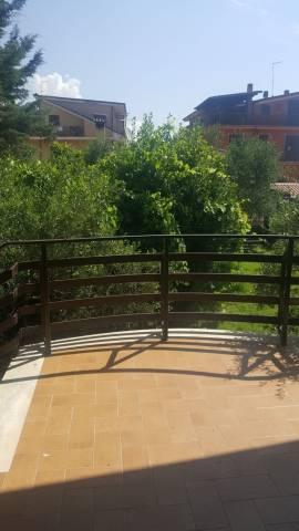 Appartamento in ottime condizioni arredato in affitto Rif. 7040656
