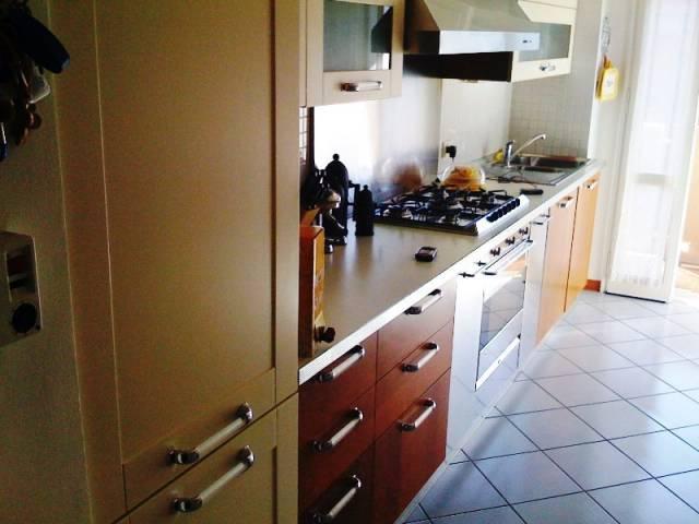 Appartamento in ottime condizioni arredato in affitto Rif. 7059386