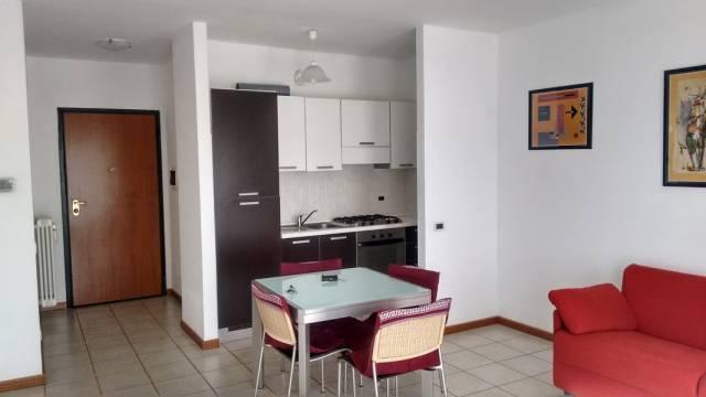 Appartamento in ottime condizioni arredato in affitto Rif. 7055798
