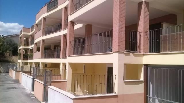 Appartamento in buone condizioni in affitto Rif. 7063029