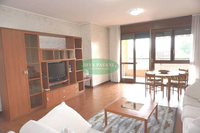 Appartamento in buone condizioni arredato in affitto Rif. 7057876